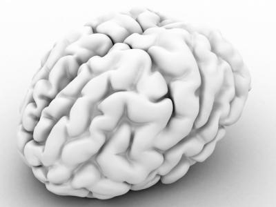 cerebro-3d 0
